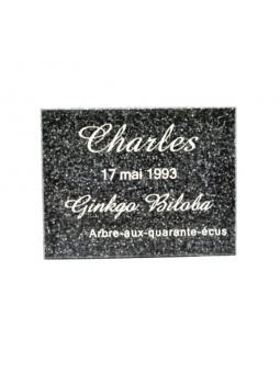 Plaque Commémorative Résine de Granit noir  - 110 x 85 mm